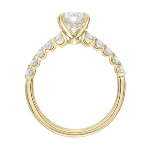 """Faye""  Diamond Accented Engagement Ring"